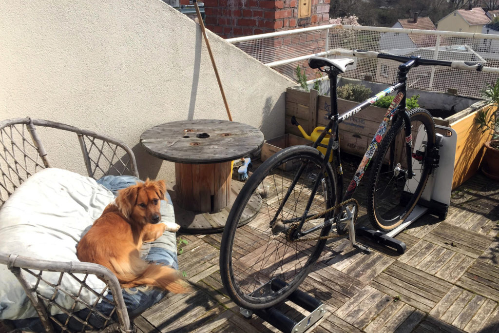 Home trainer et singlespeed
